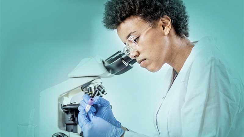 BioVaxys Cancer Vaccine Manufacturing Partner Bio Elpida Reaches Bioproduction Milestone